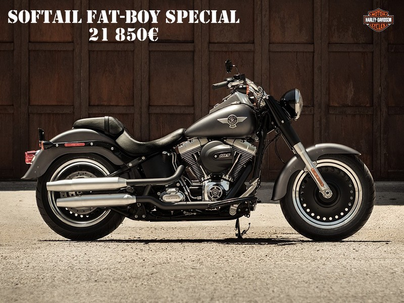 les softail harley davidson par passion harley. Black Bedroom Furniture Sets. Home Design Ideas